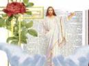 Tesori,terra,ruggine,ladri,tesori,cielo,rubano,tesoro,cuore,corpo,